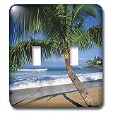 3dRose LLC lsp_89649_2 Napili Beach, Maui, Hawaii, USA Us12 Dpb0803 Douglas Peebles Double Toggle Switch