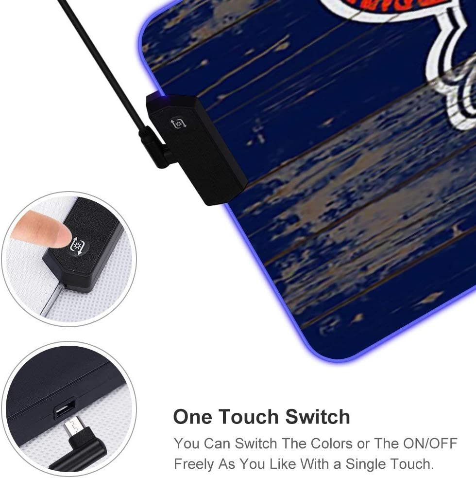 your custom choice of switch plate//outlet covers Detroit Tigers Light Switch Cover