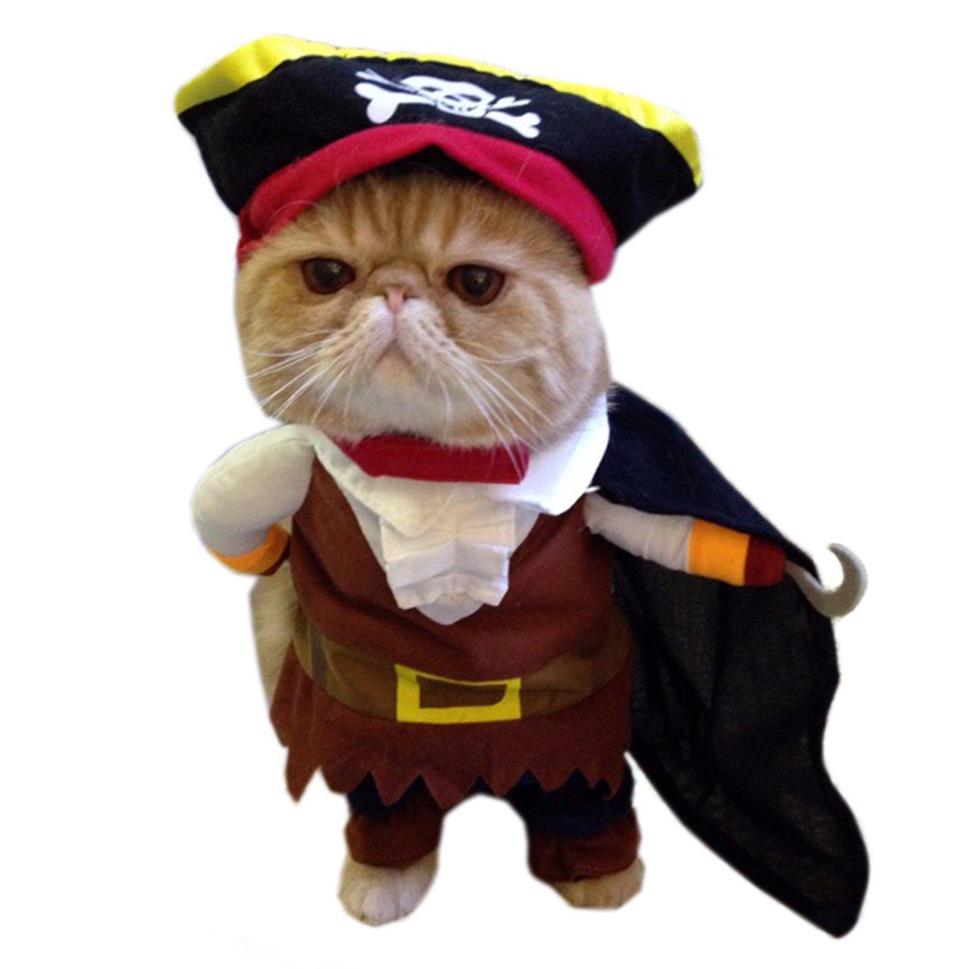 Alfie Pet Apparel by Petoga Couture - Jack the Pirate for Party Halloween Special Events Costume - Size: M