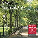 A Walk in New York City 2020 Wall Calendar