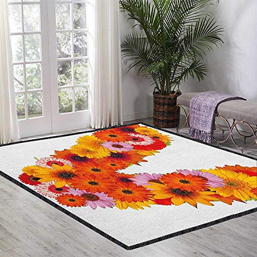 (Letter V Geometric Area Rug,Summer Season Colors with Vibrant Nature Blossom Healthy World V Alphabet Capital Provides Protection and Cushion for Floors Multicolor 47