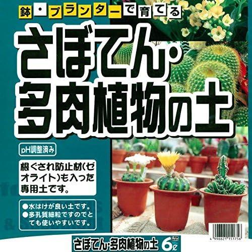 KANEYOSHI 肥料 培養土 園芸資材 観葉植物 さぼてん 多肉植物 6L