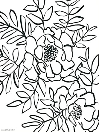 Splash of Color Painting /& Coloring Book