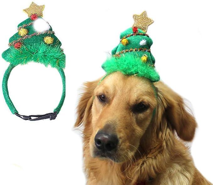 Xeminor 10PCS Mini Dog Bone Shape Hair Clip Creative Pet Hairpin Lovely Headdress Hair Accessories for Puppy Costume Random Color Superior/â/€/'Quality and Creative