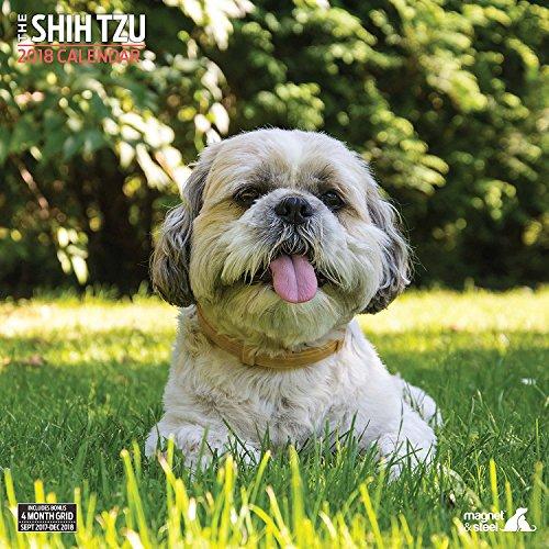 Shih Tzu 2018 Traditional Wall Calendar
