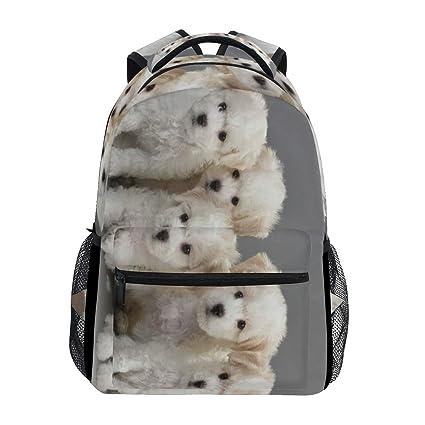 Amazon com: Backpack Bichon Frise Dog Womens Laptop