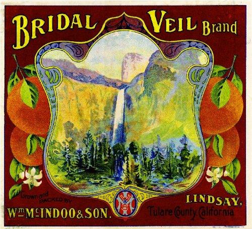 Yosemite Fruit (Lindsay Tulare County California Bridal Veil Brand Yosemite Orange Citrus Fruit Crate Label Art Print)