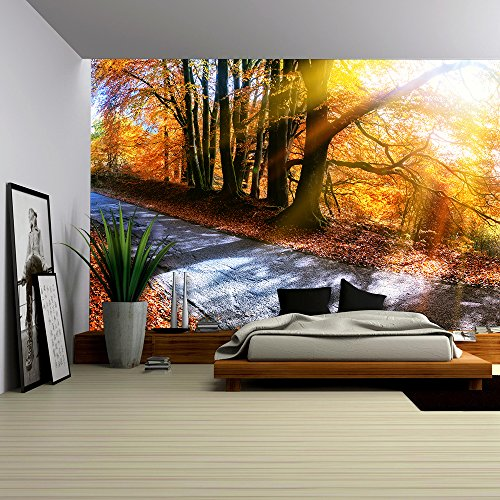 Panoramic Autumn Landscape with Country Road in Orange Tone Nature Background