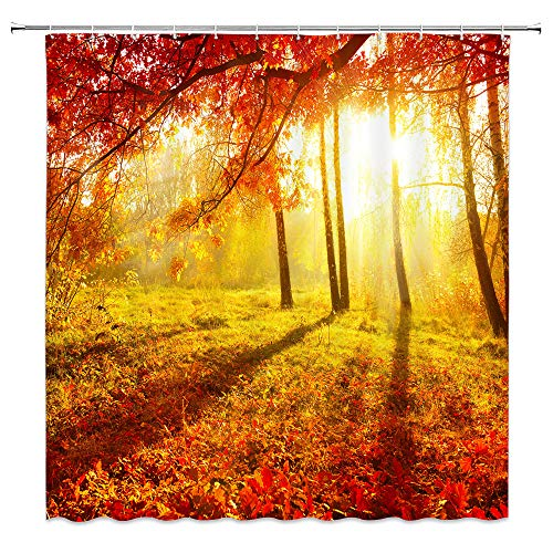 BCNEW Woods Shower Curtain Decor Autumn Fall Tree Sunshine Yellow Grass Meadow Fallen Leaves Landscape Bathroom Curtain Polyester Fabric Machine Washable with Hooks 70x70 Inches