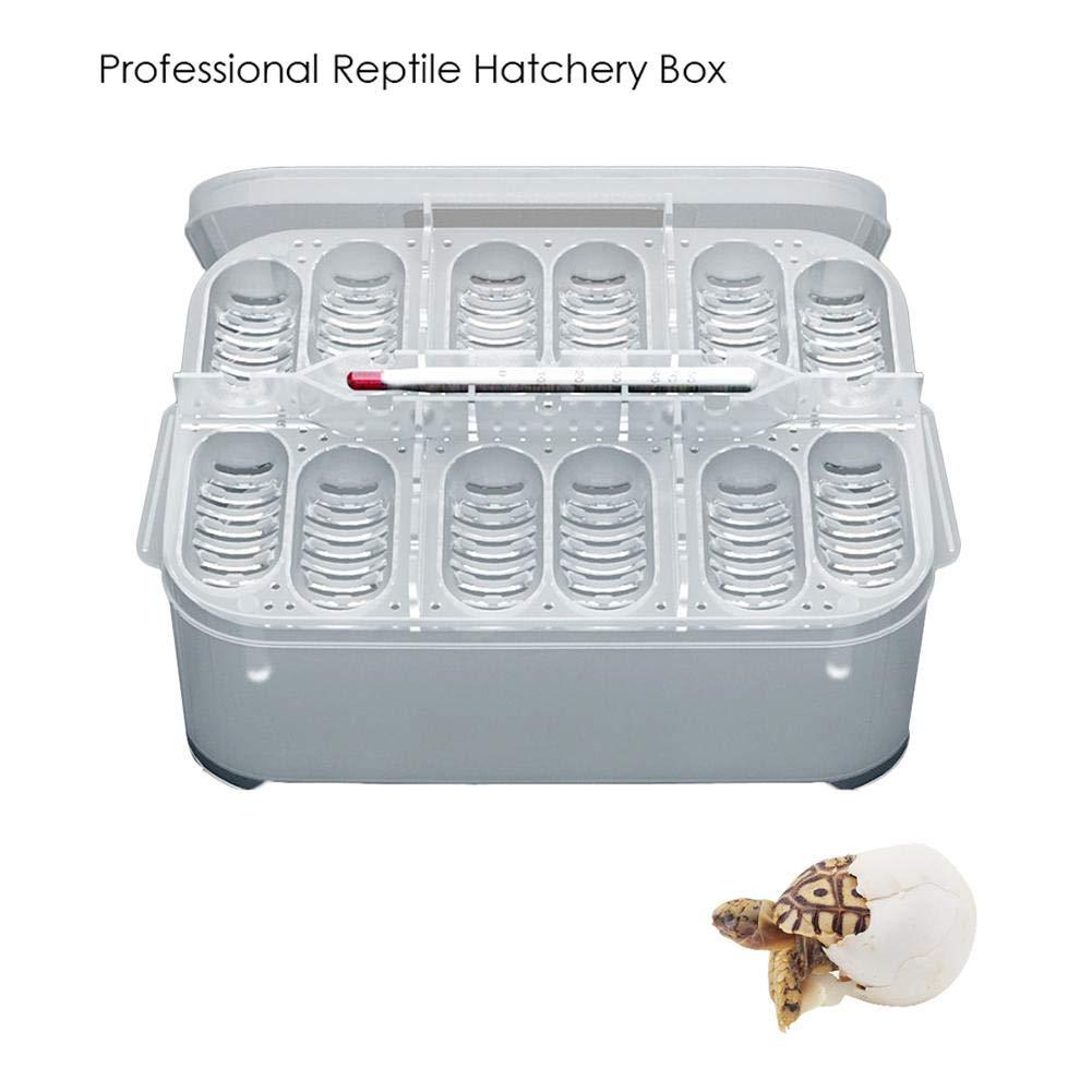 Enjoyyouselves Opfury Incubaci/ón de Reptiles Profesional de 12 cuadr/ículas con Bandeja para Huevos Caja de incubaci/ón Ideal para incubar Serpientes lagartijas Melones de Leones Reptiles