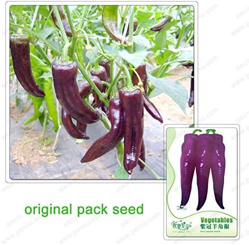 20 semillas / pack, semillas de hortalizas de chile, semillas cruasanes chile, pimienta púrpura, cuernos pimienta, chile picante no semillas: Amazon.es: Jardín