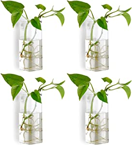 Nuptio Pcs of 4 Crystal Glass Wall Hanging Flower Vase Planter Terrarium Container Flower Pot