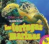 Las Tortugas Marinas (Sea Turtles) (Ninos y la Ciencia: Los Ciclos de Vida (Science Kids: Life C) (Spanish Edition)