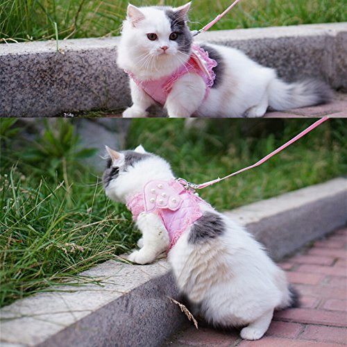 Adorable Cat Dog Kitty Puppy Safety Walking Vest Harness Leash Set Wings Costume Lace Peals (Pink, Large)