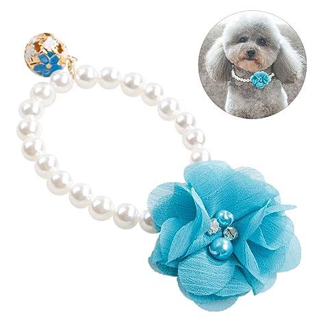 Legendog Collar De Perro Collar del Animal Doméstico Moda Flor ...