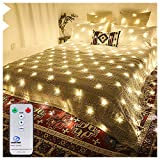 Ollny Led Net Mesh Fairy String Decorative Lights Low Vlotage - Christmas Tree-wrap Wedding Outdoor Party Garden Decorations 9.8ft x 6.6ft 200 LEDs 8 modes Warm White(Remote & Timer)