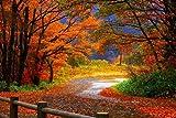 Autumn Scenery - Art Print Poster,Wall Decor,Home Decor(36x24inches)