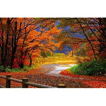 Amazon.com: F.Mints Autumn Scenery - Art Print Poster