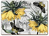 Cala Home 4 Premium Hardboard Placemats Table Mats, Conservatory