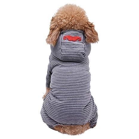 Abrigo de invierno con capucha, chaqueta de invierno ...