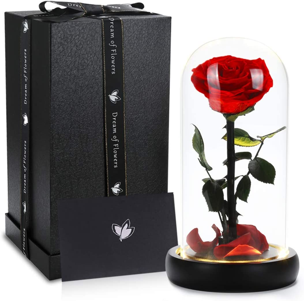 Beauty and the Beast Rose, Handmade Preserved Flower Rose in Glass Dome on Black Wood with Warm Light, Real Rose Gift for Women, Mothers Gift, Office Decoration, Valentine's Day, Birthday, Anniversary