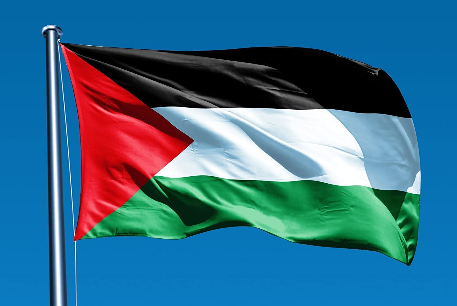 Amazon.com : Flag of Palestine 3x5 ft Flags 3 x 5 Palestinian NEW ...