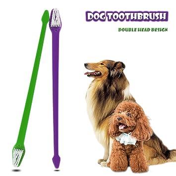 ONEVER Cepillo de Dientes de Doble Cabeza, Largo y Doble Extremo, para Gato, Perro, Cachorro, Mascota, Limpieza Dental: Amazon.es: Productos para mascotas