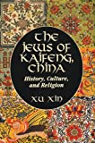 The Jews of Kaifeng, China : History, Culture, and Religion, Xu, Xin, 0881257915