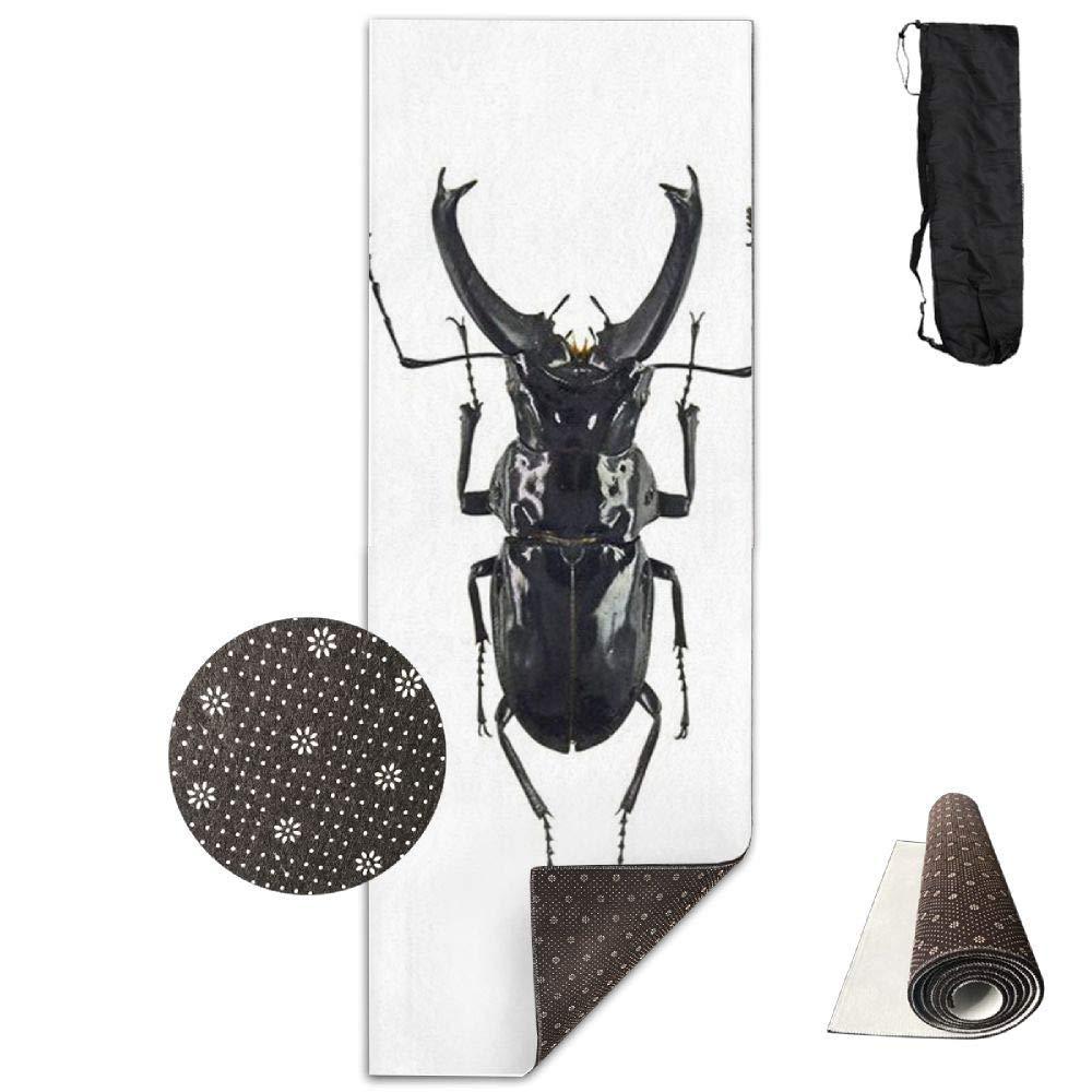 70Inch Long 28Inch Wide Comfort Velvet Yoga Mat, The Rhinoceros Beetle Mat Carrying Strap & Bag