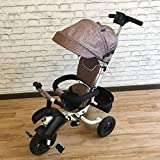 QXMEI Children's Tricycle Folding Baby Bicycle Child Car Baby Stroller with Awning,Coffee