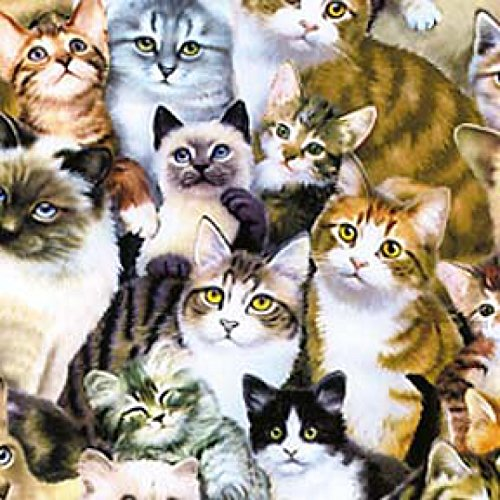 1 Yard Multi Packed Kittens by Howard Robinson from Elizabeth's Studio 100% Cotton Quilt Fabric 1253 ()
