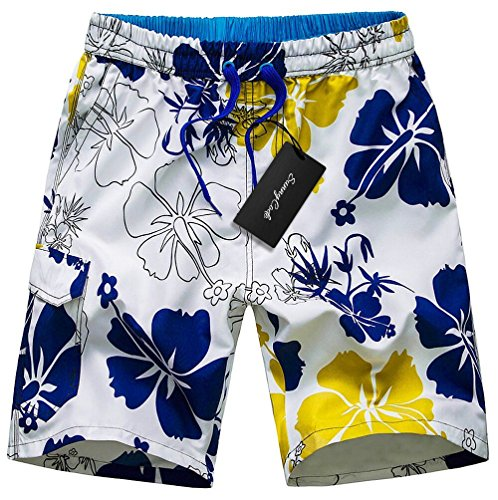 Men's Quick Dry Boardshorts Bathing Suits Swimming Trunks Tropical Island Beach Shorts, XL(30-32), Waigeo