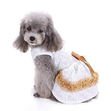 Amazon.com: IDOMIK - Camisa de encaje para perros, para ...