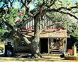 Luckenbach Texas Photo Country Decor 8x10 inch print