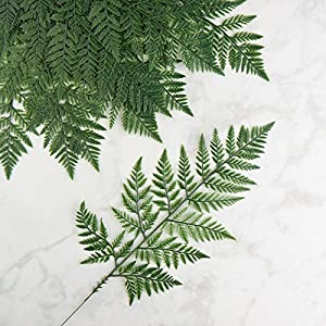 Factory Direct Craft Vinyl Artificial Leather Leaf Fern Stems | 12 Stems 10