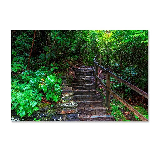 Linville River Steps by Bob Rouse, 12x19-Inch Canvas Wall - Linville Natural