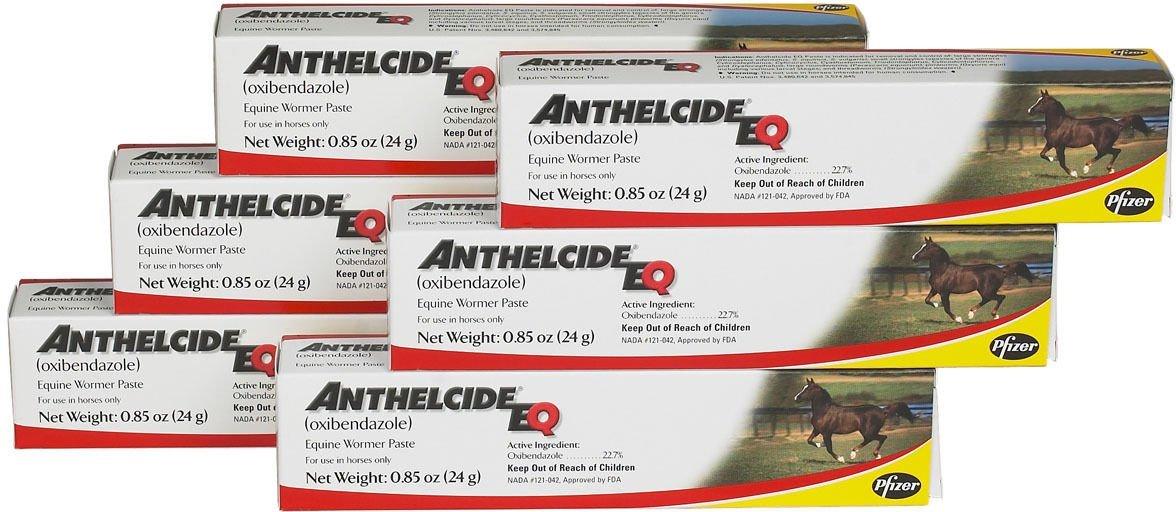 Pfizer Anthelcide EQ Equine Wormer Paste De-Wormer Horse 6 Tubes