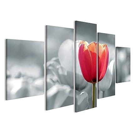 Quadri Moderni Tulipano Rosso Su Uno Sfondo Bianco E Nero Percorso