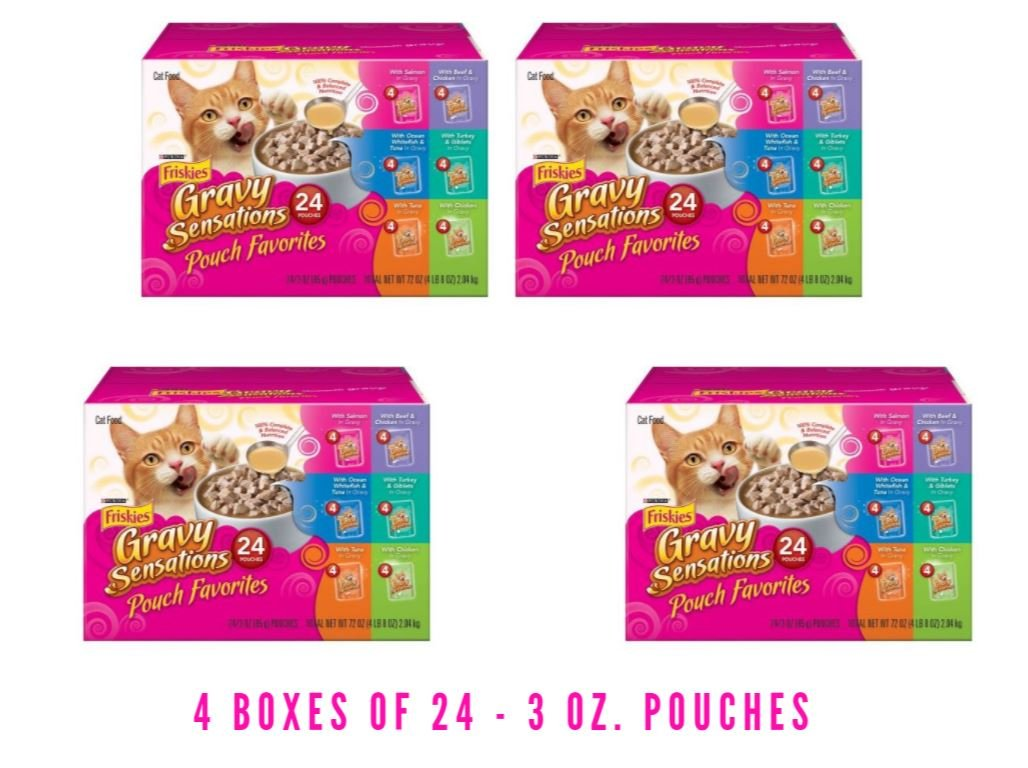 Purina Friskies Gravy Sensations Pouch Favorites Cat Food Variety Pack 24-3 oz. Pouches (4 Boxes of 24 - 3 oz. Pouches) by Purina Friskies