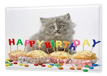 LEotiE SINCE 2004 Cumpleaños Felicitaciones Cartel De Chapa Gatos Cachorro Feliz cumpleaños Decorativo De Pared Letrero De Metal 20X30 cm: Amazon.es: Hogar