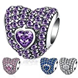 Ronglai Jewelry Sterling Silver Love Heart Bead Charm Pink Crystal Birthstone CZ Charms fit Snake Chain Bracelet 4 Styles (Purple birthstones Charm)
