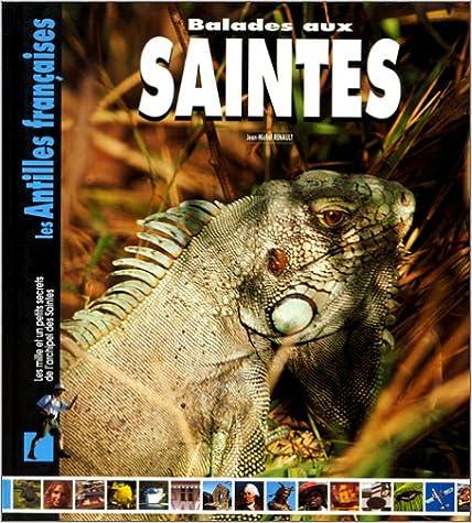 En ligne téléchargement gratuit Balades aux Saintes pdf, epub ebook