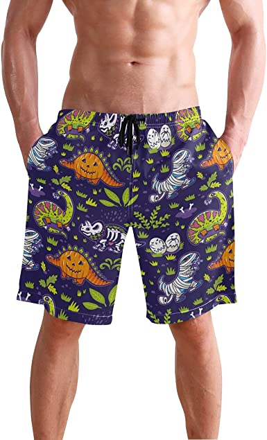 Mens Quick Dry Swim Trunks Colourful Pattern of Dinosaurs Beach Shorts with Pockets