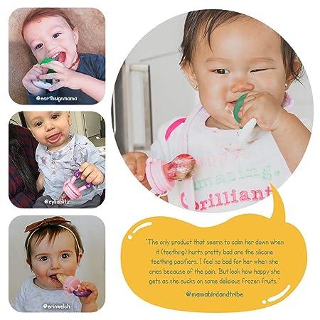 Brilliant Nuby Nibbler Teething Pacifier 2 Pack Baby