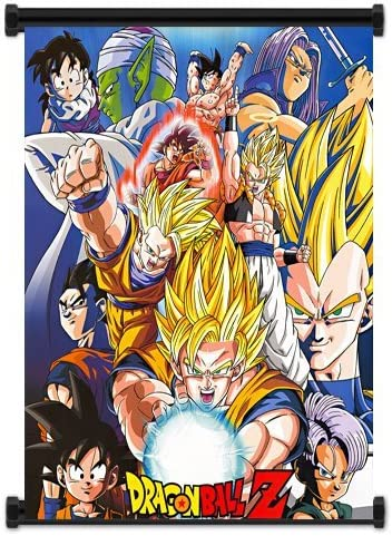 Dragon Ball Z Anime Fabric Wall Scroll Poster 32 X40 Inches Amazon Ca Home Kitchen