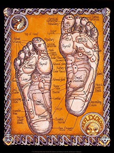 Reflexology Art Print Art Poster Print by Robert Rosenthal, 12x16