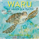 Waru the Green Sea Turtle