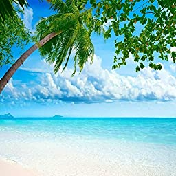 GladsBuy Comfortable Beach 10\' x 10\' Digital Printing Photography Backdrop Sea Backdrop Anti-UV Studio Background YHB-172