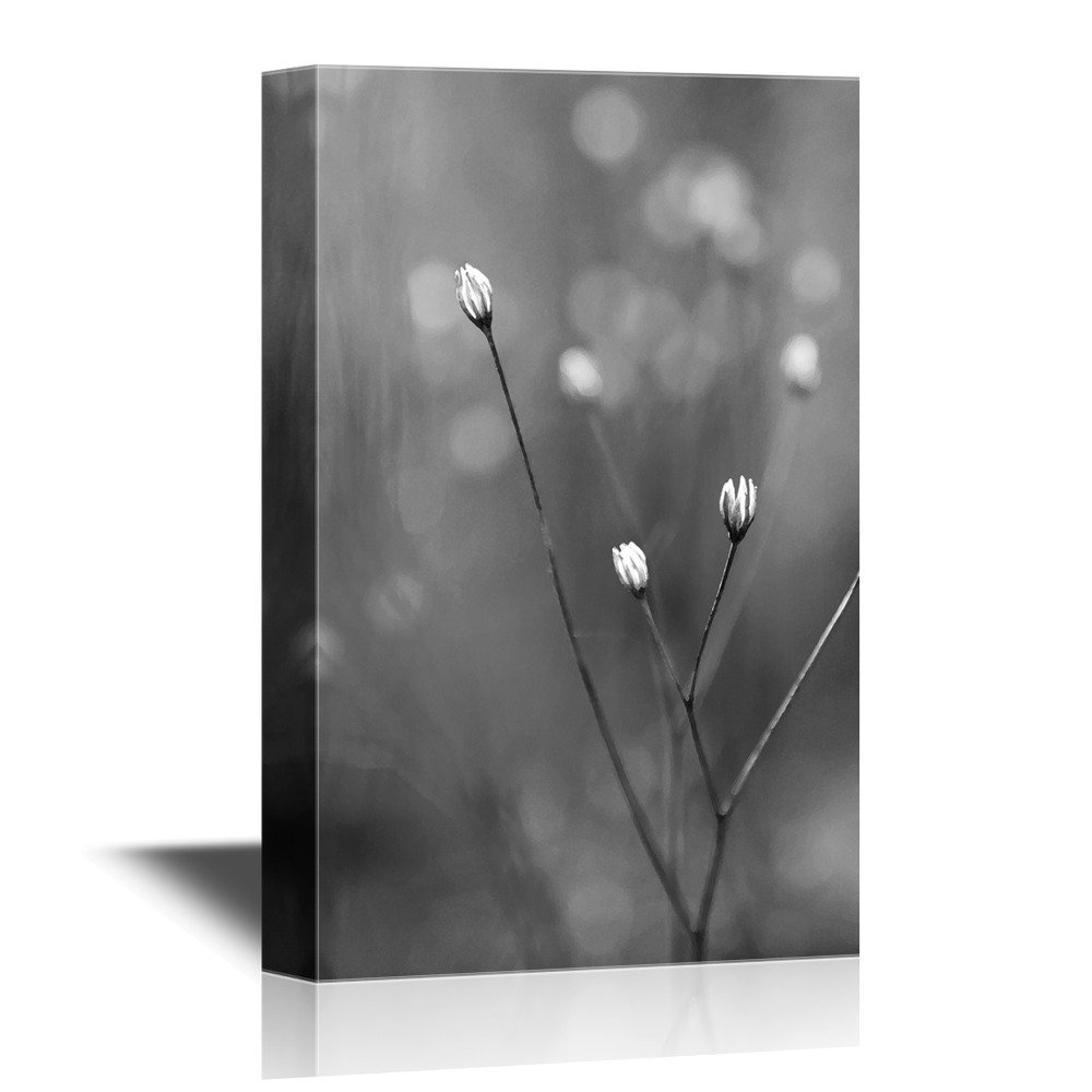 Flower In Black And White Canvas Art Wall26