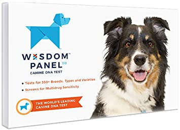 Amazon Com Wisdom Panel 3 0 Breed Identification Dog Dna Test Kit